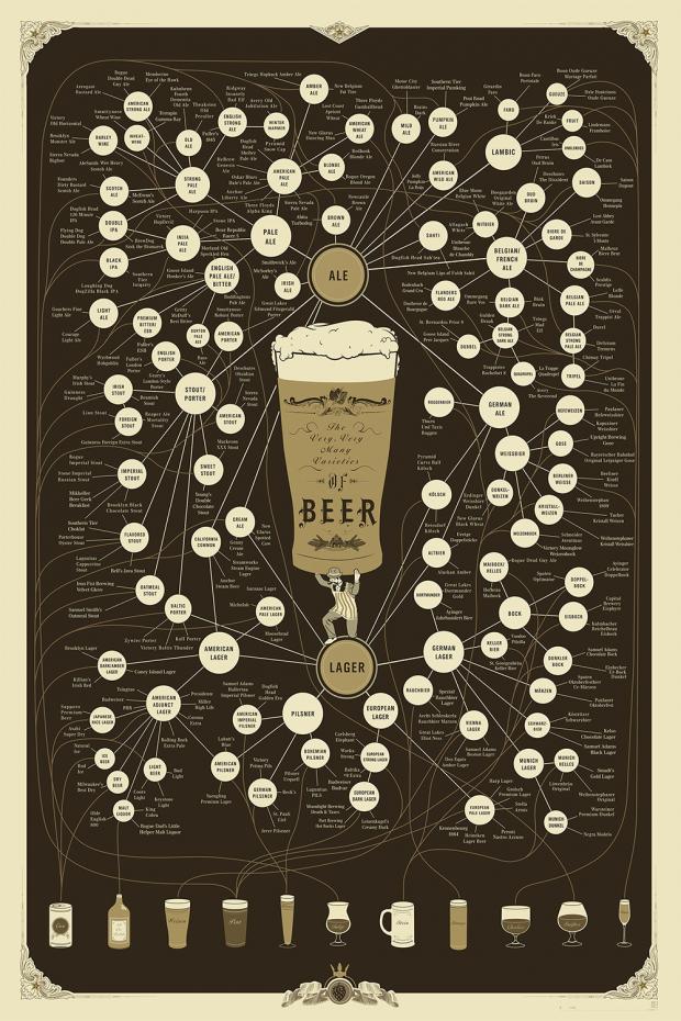 Infographic Welke biersoorten zijn er