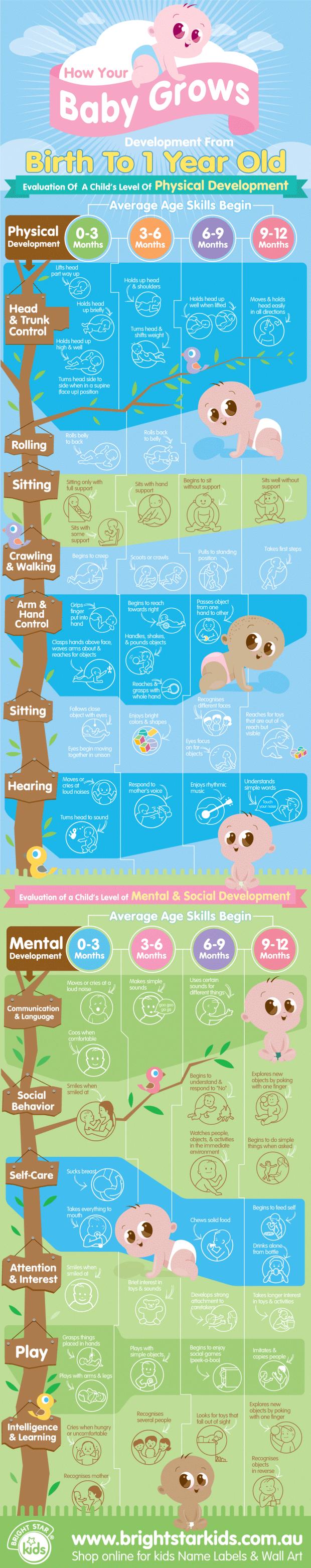 Infographic Baby hoe veranderde jij