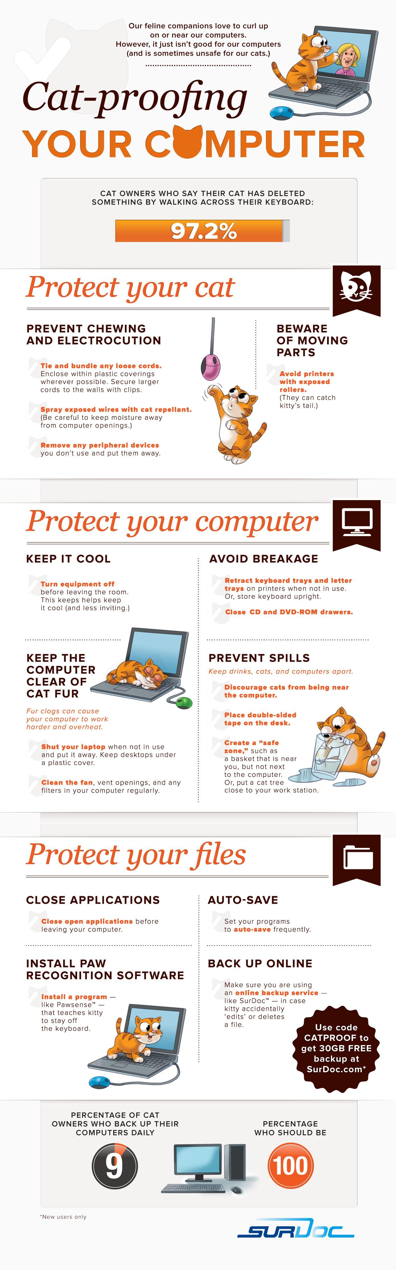 Infographic Bescherm je computer van je kat