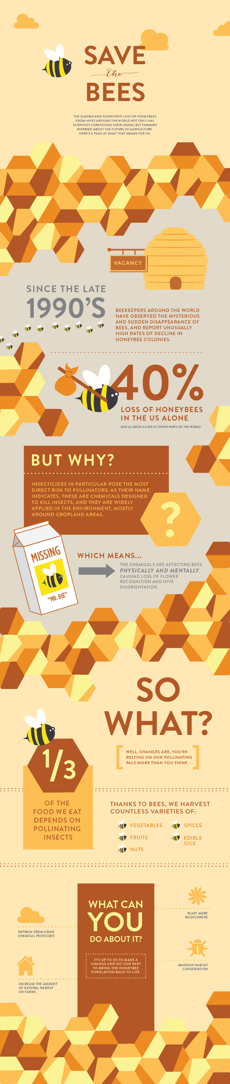 Infographic Red de dieren: bijen