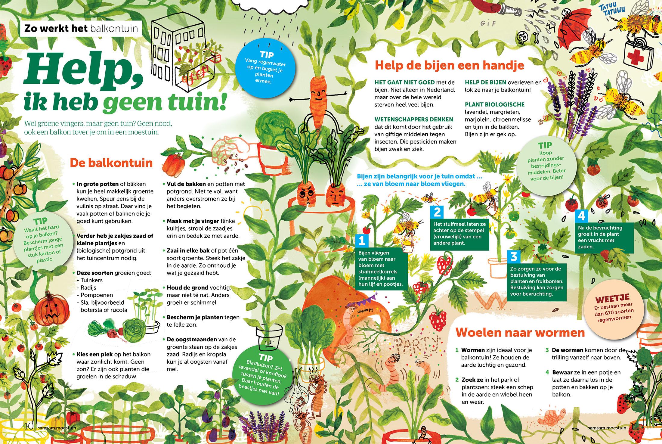 Infographic Help ik heb geen tuin
