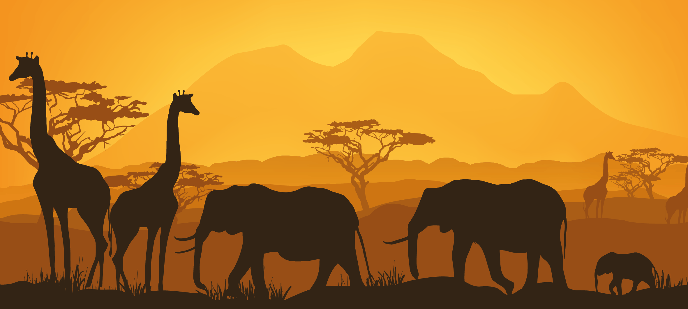 glamping safari infographic detail