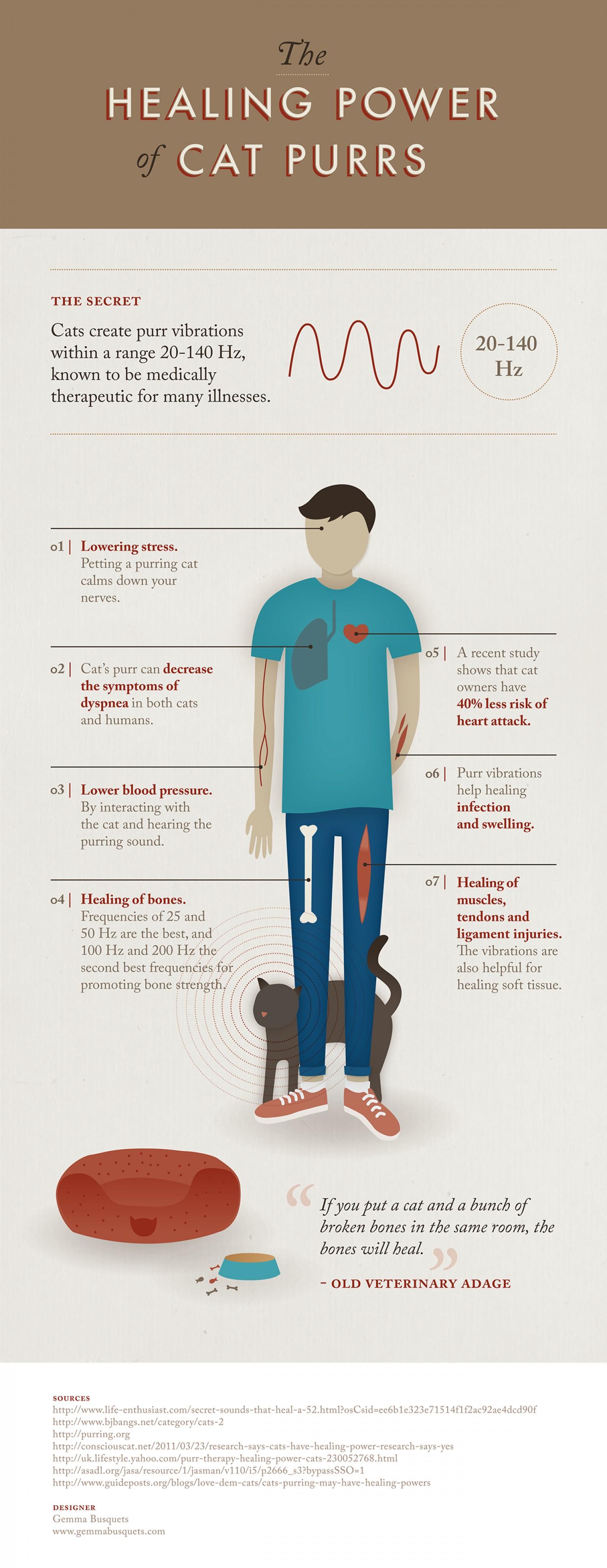Infographic Katten spinnen