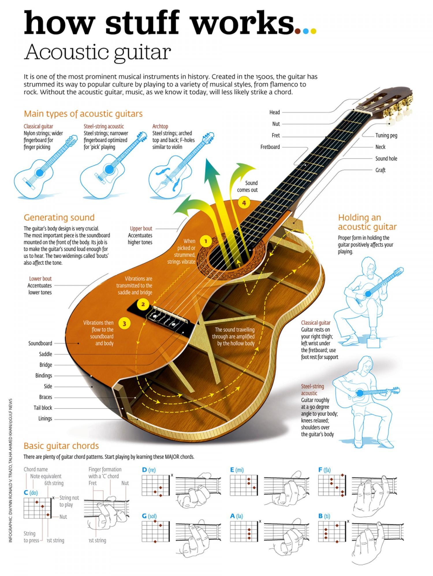 Infographic Muziek gitaar
