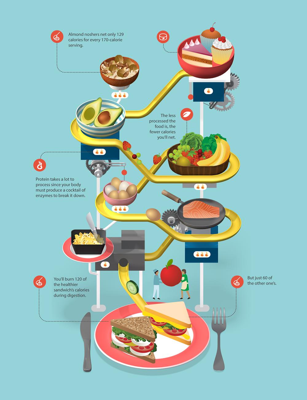 Infographic Handige voedsel feitjes
