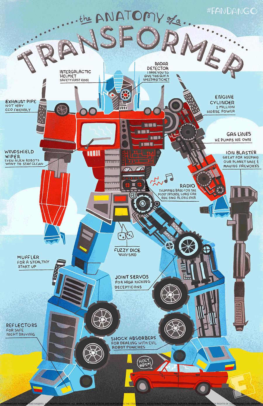 Infographic binnenkant van de transformers: Ananotomie