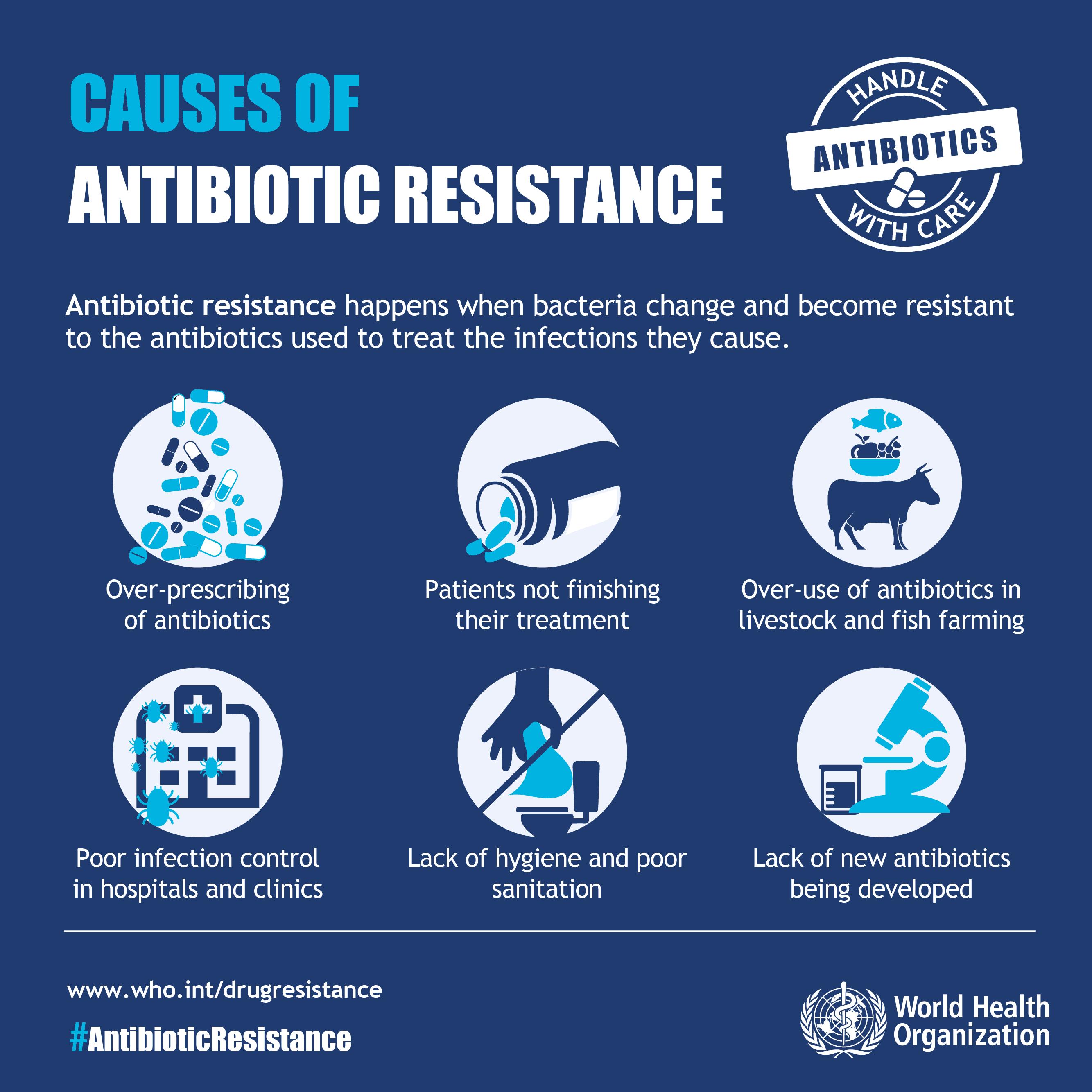 Infographic Hoe worden bacterien resistent tegen antibiotica