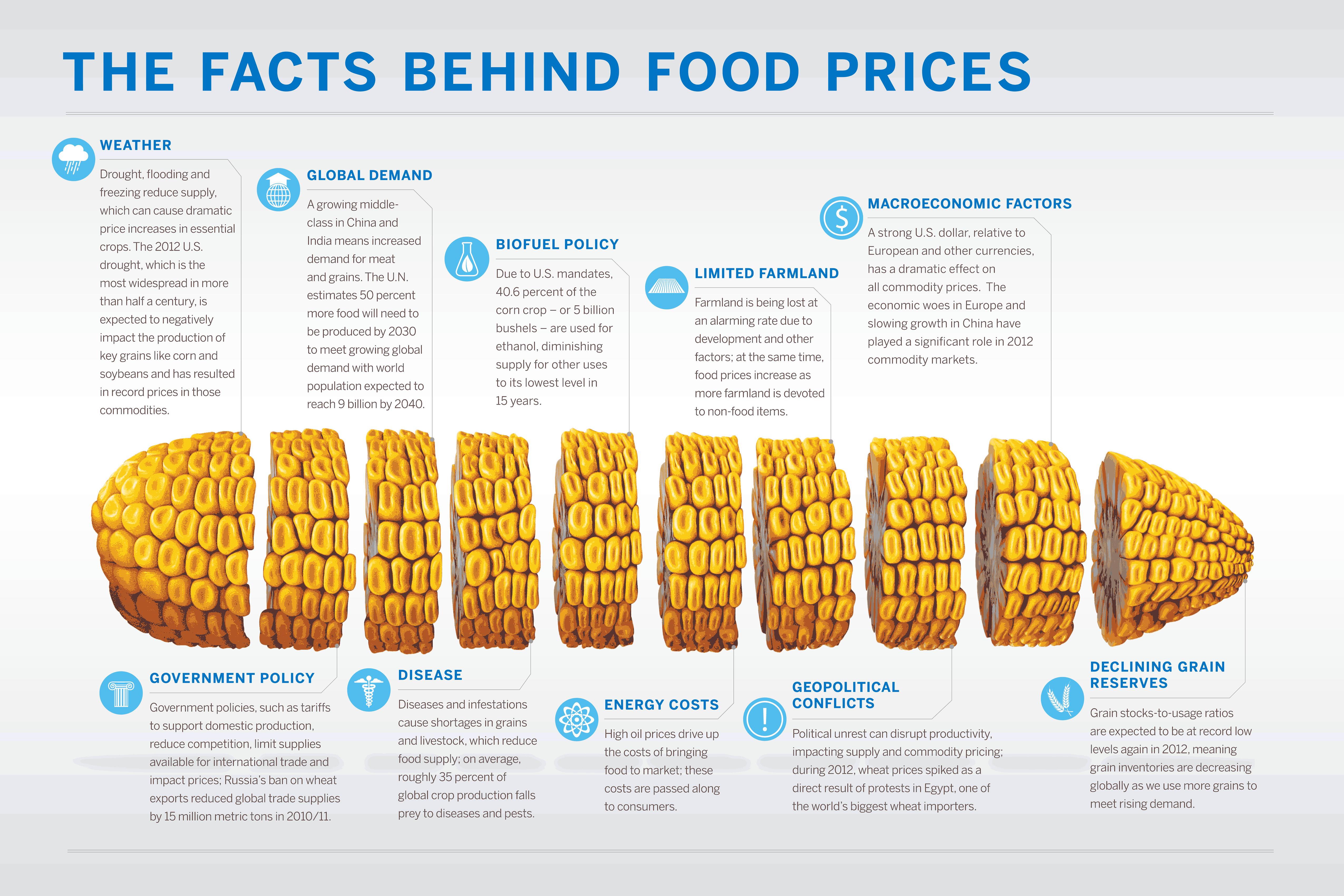 Infographic Voedselprijzen