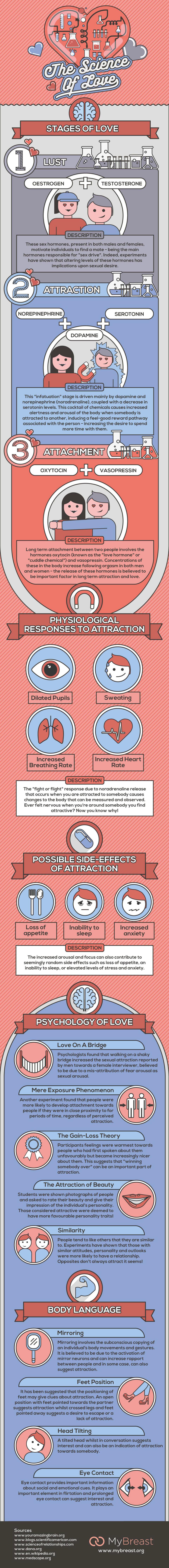 de wetenschap achter liefde