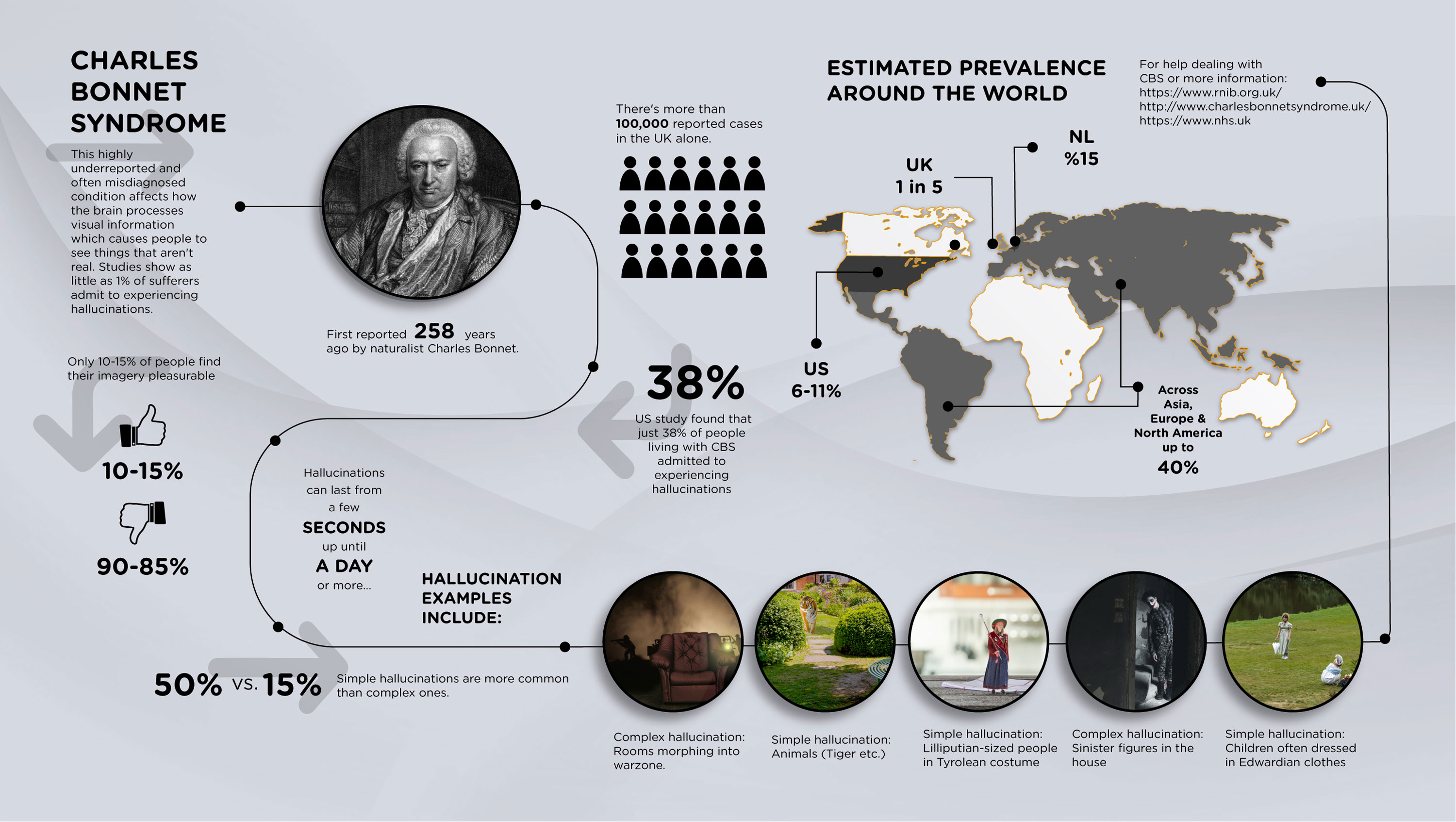 infographic charles bonnet syndroom