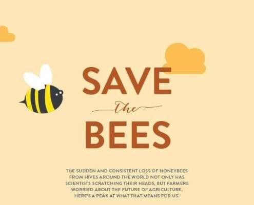 red de dieren bijen