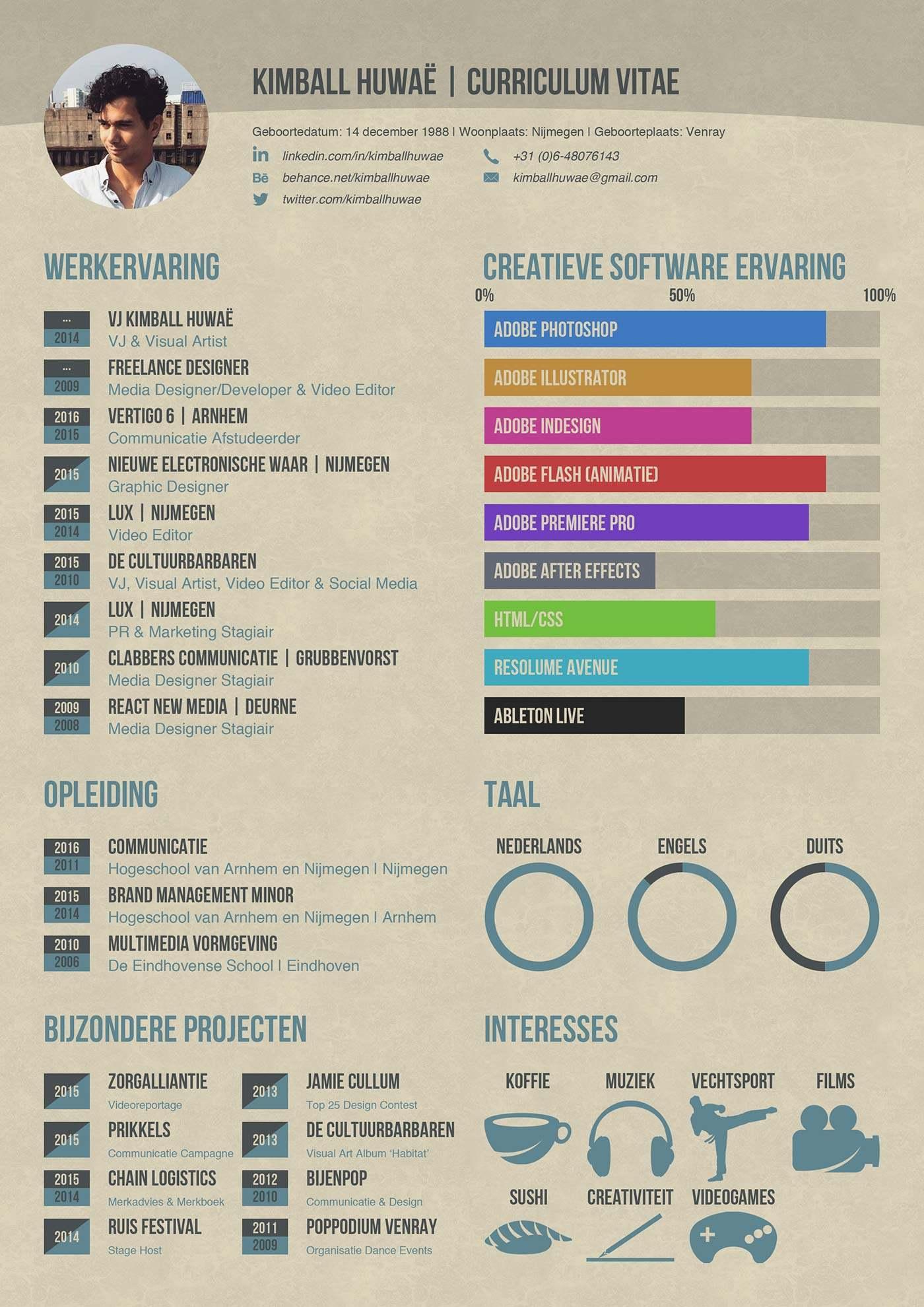 Nederlandse cv infographic   Cool Infographics