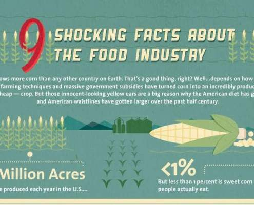 schokkende feiten over de food industrie