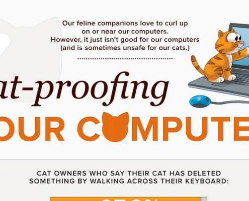 Katten & Computers Infographic Thumbnail