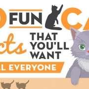 Katten & Computers Infographic