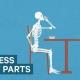 Video over 5 nutteloze lichaamsdelen die we nog steeds met ons mee dragen