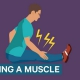 Infographic over wat er gebeurd als je je spier verrekt