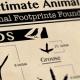voetafdrukken van dieren uit noord amerika